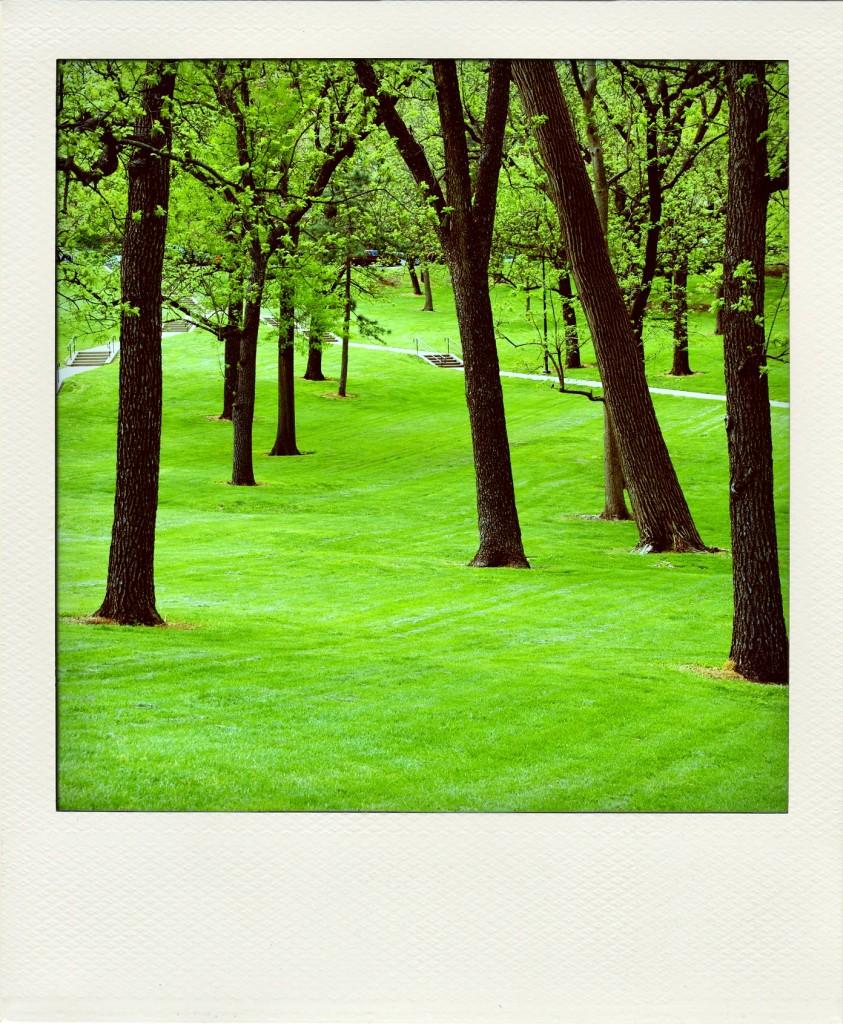 spring-grove-pola