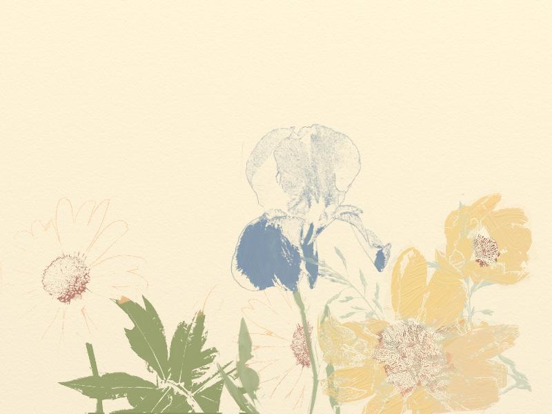 Floral Sketch2