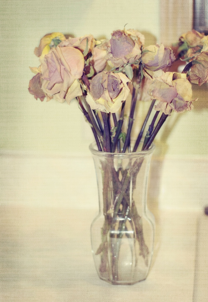 dried vase of roses