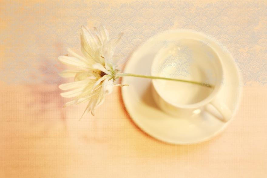 daisy espresso mug