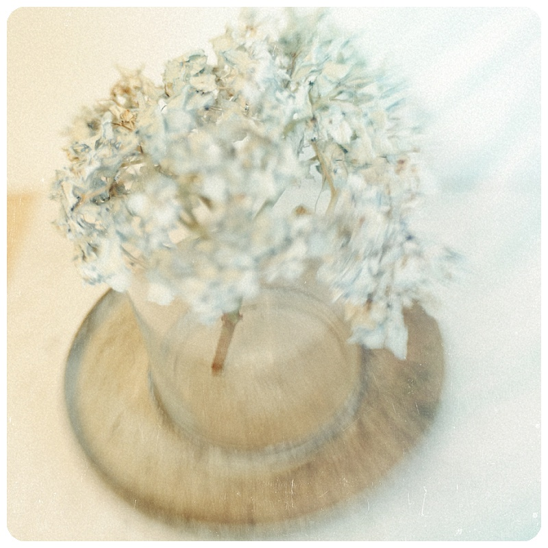 Shabby Chic Hydrangea Gallery32 etsy Home Decor