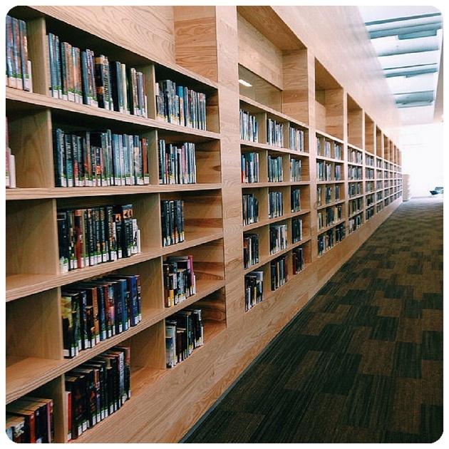 Fiction shelves Lawrence Public Library Trina Baker Photos