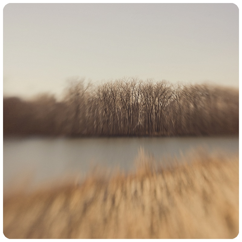 TBP_5155