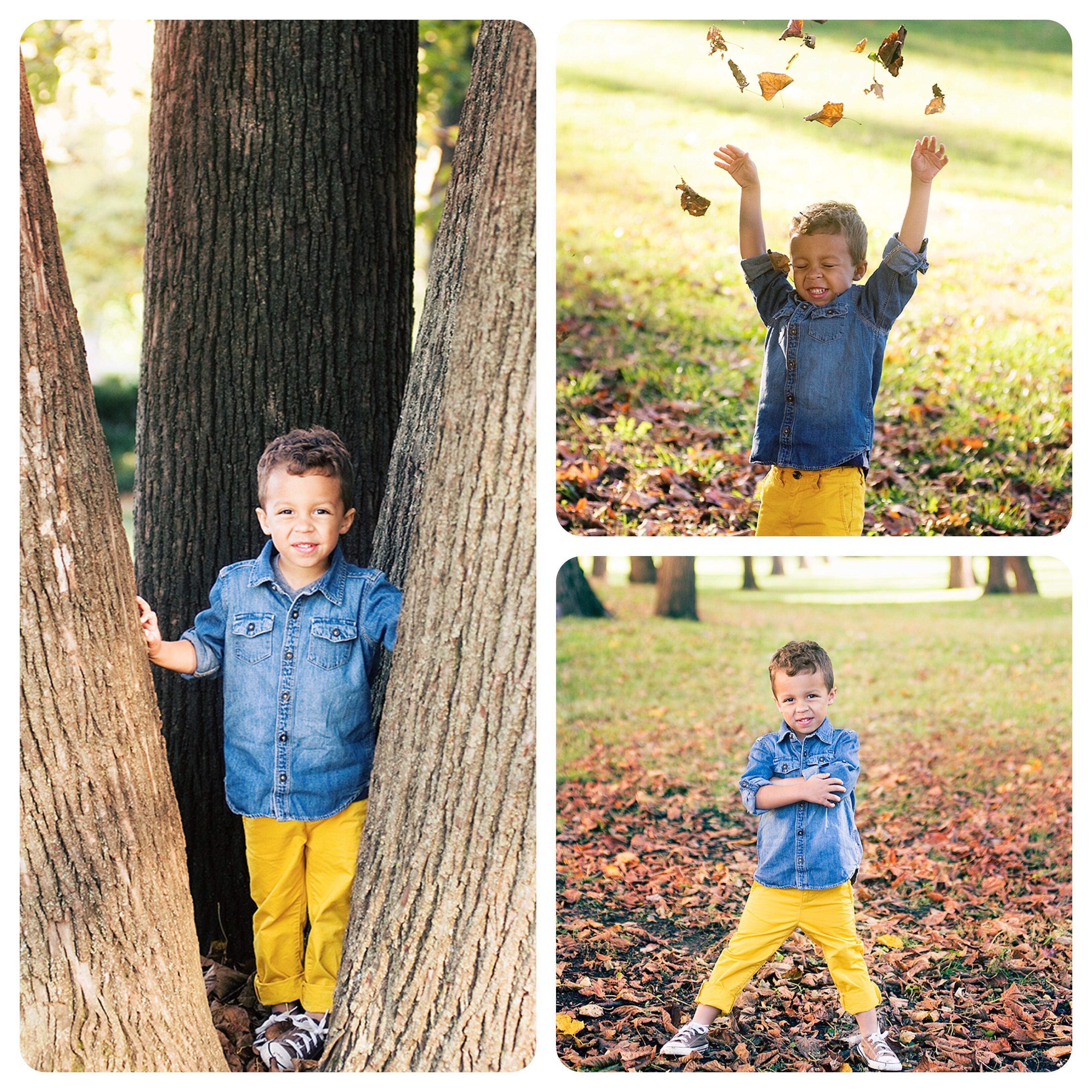 Little boy in yellow pants poses for Autumn portraits in Lawrence